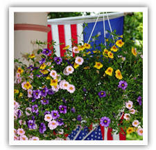 Beautiful flowers on the Puffin Porch in Cape May